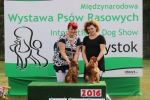 National Dogshow in Wasilków